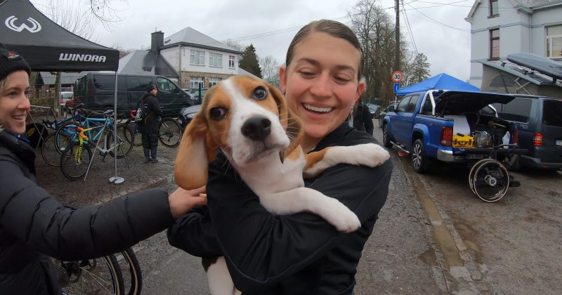 A blog of Belgium, bikes, and beagles – Emily in Europe